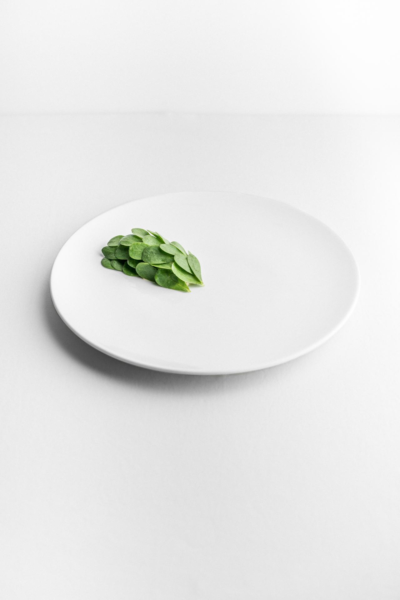 Insalata di granchio e portulaca di Luca Bizzarri, infoodfamily, foto di Matteo Bizzarri
