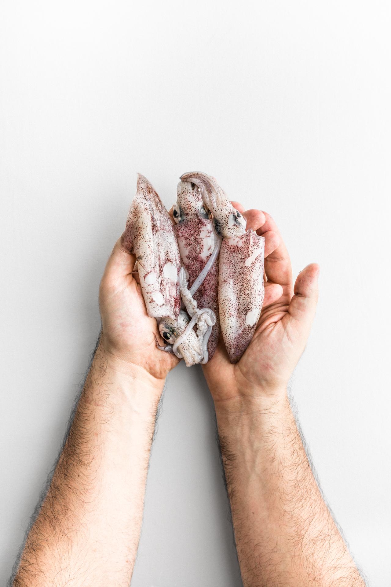 Calamari di Luca Bizzarri, infoodfamily, foto di Matteo Bizzarri